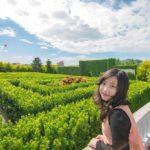 探索迷宮歐式莊園餐廳|超好拍浪漫歐風莊園&穿梭超大綠色迷宮